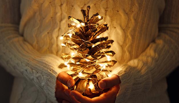 Exceptionnel AES Recomienda Utilizar Luces LED Para Sus Decoraciones Navideñas Porque  Consumen Menos Energía Que Las Tradicionales./DEM