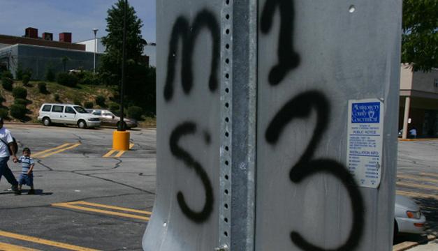 EE.UU. acusa a 14 ranfleros de la MS-13 por terrorismo