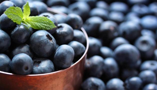 Consumo de arándanos contribuye al envejecimiento saludable, según estudios
