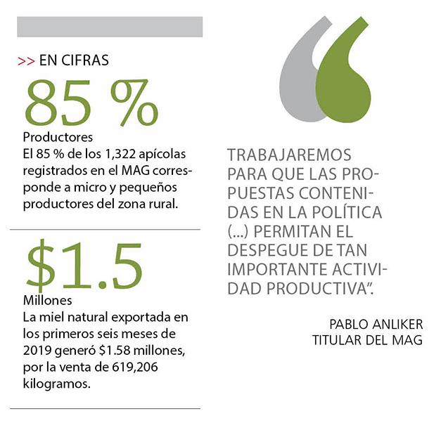 MAG lanza Política apícola que facilitará créditos a los productores