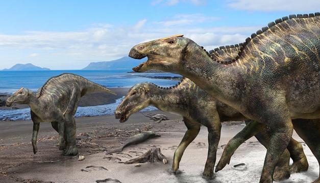 Depredadores Como Cocodrilos Aterrorizaron A Los Dinosaurios Herbivoros Diario El Mundo La mayor parte de los dinosaurios eran herbívoros. depredadores como cocodrilos