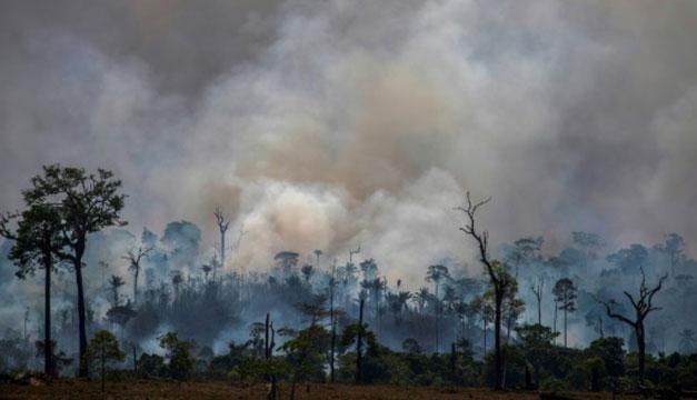 La pandemia deja a la Amazonia más frágil que nunca