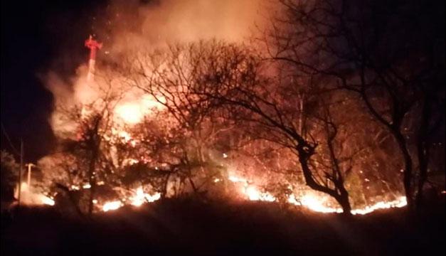 Reportan incendio forestal activo en el sector de El Zonte, La Libertad