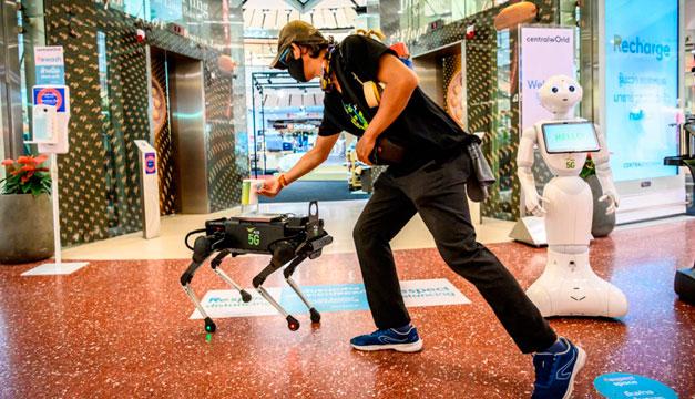 Un perro robot distribuye gel para las manos en un centro comercial en Bangkok