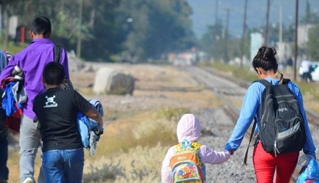 Juez federal bloquea política de la Administración Trump que permitía expulsar a niños migrantes
