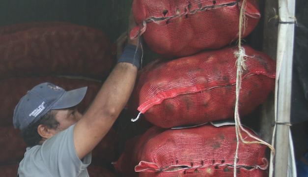 Precio de cebollas, tomates y papas suben por daños de Eta
