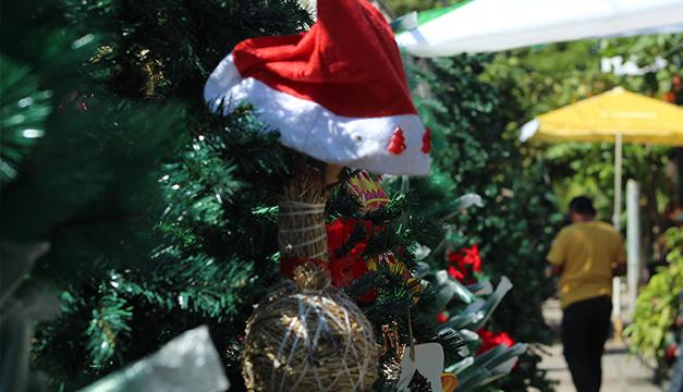 En foto: Así se vive el ambiente navideño por las calles de San Salvador