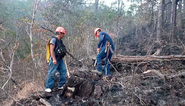 Defensores ambientalista del Río Sapo piden acciones para proteger y frenar su deterioro tras incendio